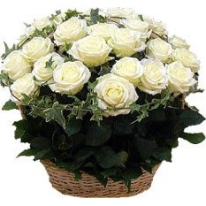 Love is in Bloom Flower Basket