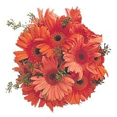 Orange princess - Bouquets on www.flowerstopetersburg.com