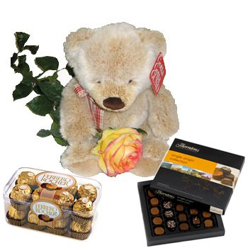 Teddy With Chocolate Gifts
